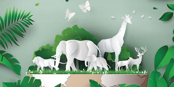 Imagen de Medioambiente y biodiversidad