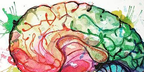 Imagen de El arte, la otra cara del cerebro