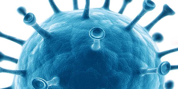 Imagen de Darwin bajo el microscopio