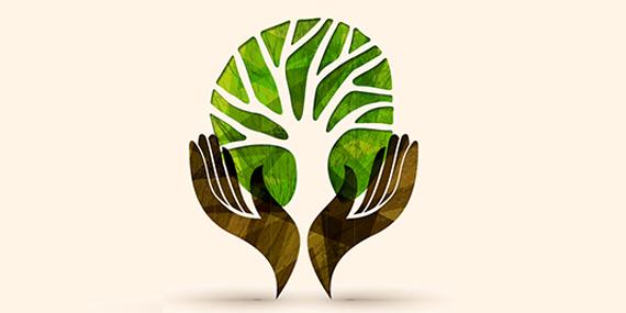 Imagen de Cambio climático ¿hacia una mirada verde?